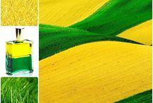 Verdes-Amarillos