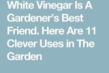 gardener's friend white  vinegar