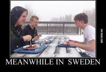 Because We Love Sweden