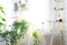 Jardin & balcon