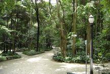Favorite Places & Spaces / Culture And Parks