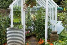 Gardening - Greenhouse