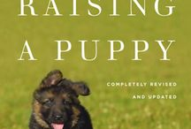 Joy / Helpful hints for raising our rescued puppy, Joy.
