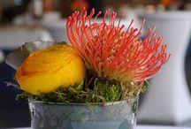 flower arrangements  / flower arrangements @ Kalkscheune