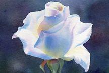 Floral rose