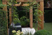 Twickenham Family garden