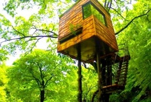 ideas for Isabella's tree house