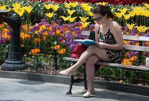 Photo lecteurs