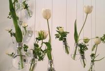 Fiori matrimonio / Idee floreali per il tuo matrimonio