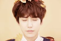 lovely kyu