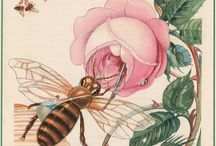 BeeBeatiful / by Beverly