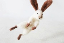 Flying Bunny / by Claire Byars