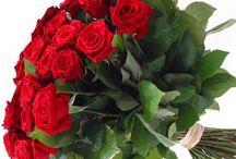 kvetinarstvo Bratislava / krásne kytice s doručením alebo osobný odber