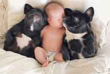 psy dzieci