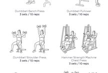 WEDNESDAY triceps and obliques