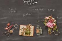 website inspiration / boston ivy flowers