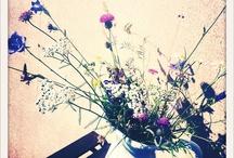 flower power / florecillas / by etiam Gula