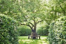 Romantic Gardens: Garden Nooks