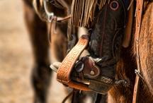 Photography <3 / by Lakota