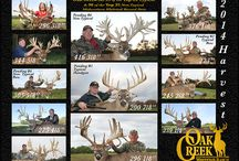 Oak Creek Whitetail Ranch Harvest Flyers / These are the flyers showing a few of the deer harvested each season at Oak Creek Whitetail Ranch.
