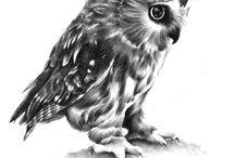 κουκουβαγιες / διαφορε σχεδια ταττου με κουκουβαγιες