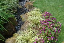 Fleurs plantes idées jardin
