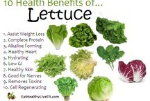 Lettuces / Health benefits of lettuces and some recipes to help you navigate your way through your CSA delivery this month!