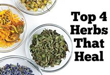 Healing Herbs and Other Plant Remedies
