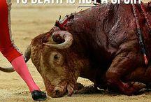 Mörder einfach grauenhaft