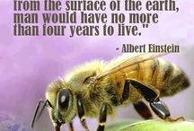 Bizzy,Buzzy, Bee! / thank you dear sweet Bees for all that you do....makes life good.....and sweet. / by Deborah Baxter