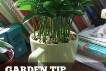 livehacks useful tips