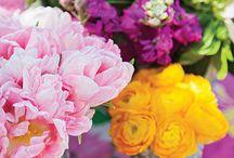 Sea Island Celebration | Flower Magazine / Designer Elaine Griffin put together a fantastic garden luncheon at The Cloister for Flower Magazine!  Photography by Julia Lynn Photography | Floral design by Vine Garden Market