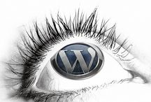 Hire WordPress Developer / Hire WordPress Developer: PSDtoWordPressExpert offers best Wordpress programmers for your WordPress web development work at competitive rates. Get best  hand coded, w3c validated WordPress development service from our expert WordPress Developer. / by PSDtoWordPressExpert .
