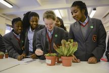 Photo of the Month / Winning photos are put on our home page. To enter your school's photo go to www.rhs.org.uk/schoolgardening