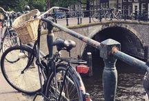The Netherlands / The Netherlands Amsterdam Haarlem Rotterdam Sightseeing such as Heineken brewery experience, torture museum, cube buildings Food - chcolate pie! Haaring/herring, cheese
