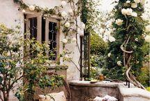 My Home is my Balcony