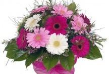 Basket of White & Pink Gerberas