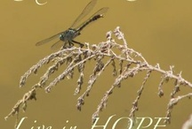 Choose to Live in Hope