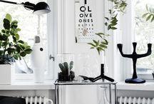 VILLA d'ESTA    PLANTS / Urban jungle in your home