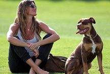 Celebs love their pets, too! / Celebrities loving their pets / by Pet Valu - US