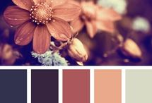 color schemes / by Stacy Drewes