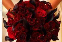 Wedding / Wedding ideas! / by Casandra Furtado