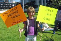 Activism / Fair food and social justice