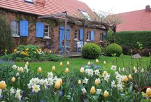 Gartenideen für unseren Garten