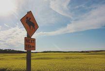 Canada ✈ Rutas y Rutinas Travel Blog
