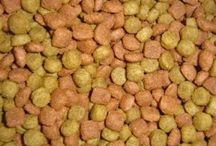 Choosing the Best Dog Food for Puppies / Finding the best dog food for puppies can be a little overwhelming, when you consider the number of brands on the market, all of which boast that they have the best formula a growing puppy needs.