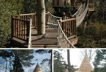 Tree Houses / by Mark Davis