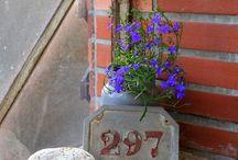 Naše zahrada / Sice občas připomíná sklad stavebního materiálu, jelikož je stále v procesu budování, ale občas  se mi podaří dát nějaké místo do pořádku... A za rok na něm  bude třeba hromada kamení... a nebo jiné kytky... člověk u nás nikdy neví.