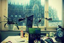 Officelove