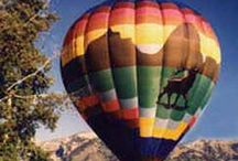 Summer Activities / Summer Activities in Jackson Hole and its surrounding areas such as Yellowstone National Park and Grand Teton National Park.